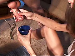 Stacey Milks Cocks - Compilation