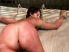 Bdsm Sex Slaves In Heat