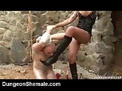 Raunchy Mistresses Sharing Hot Slave