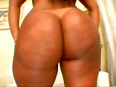 Do You Like Big Round Asses?
